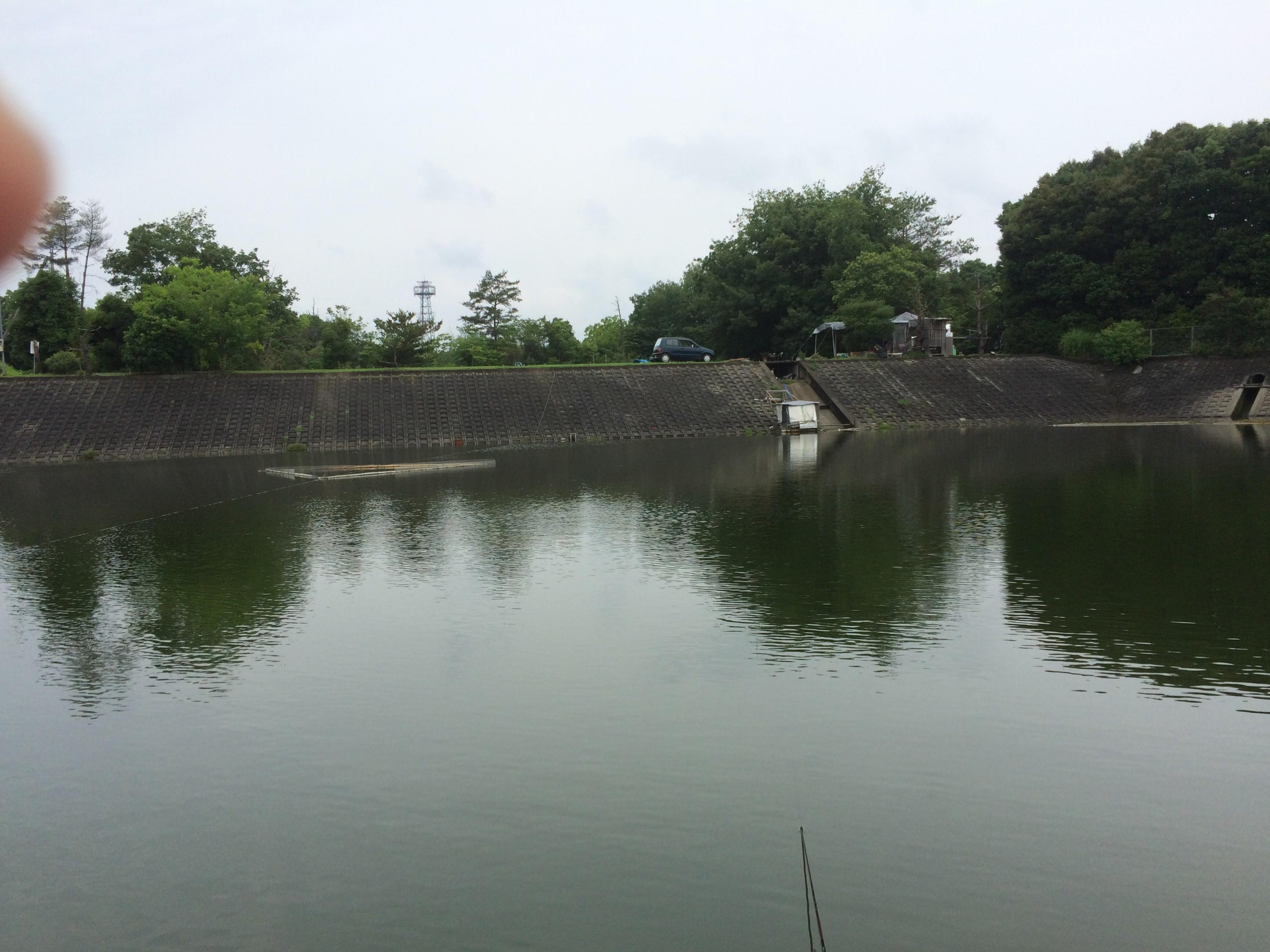 野池(2015.07.05) 武庫川野べら会例会