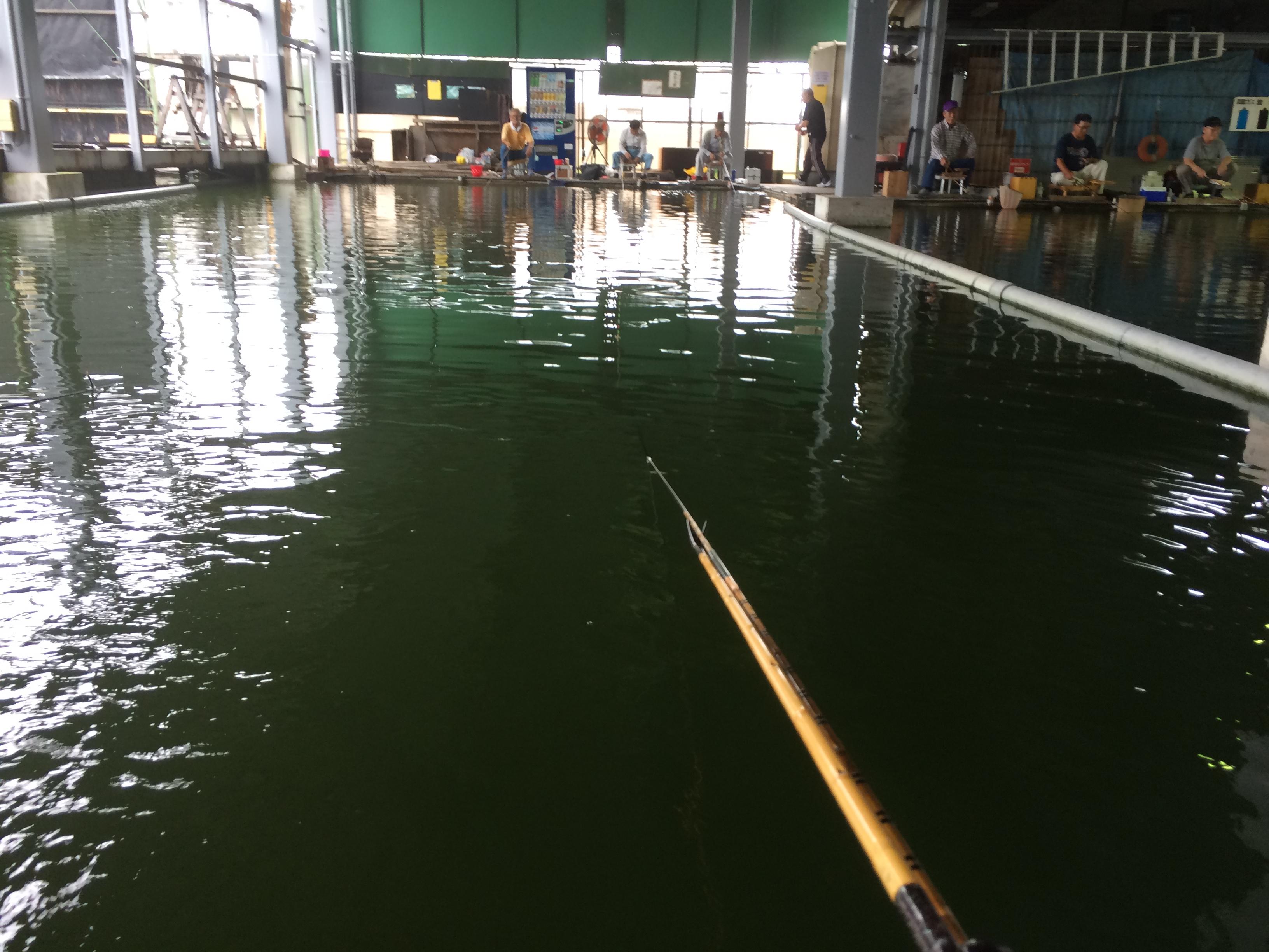 西池(2015.08.30)