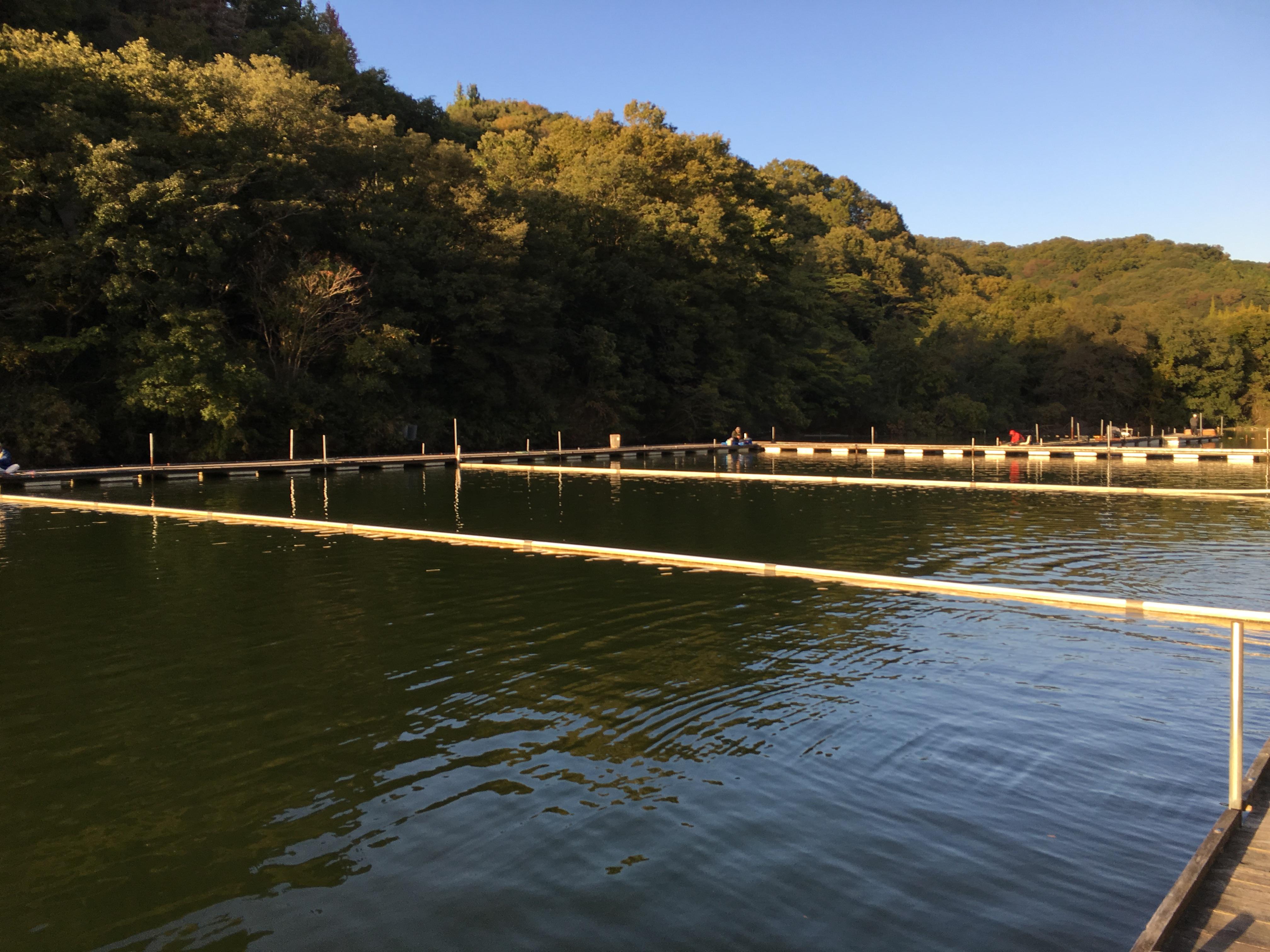 菊水(2015.10.31)