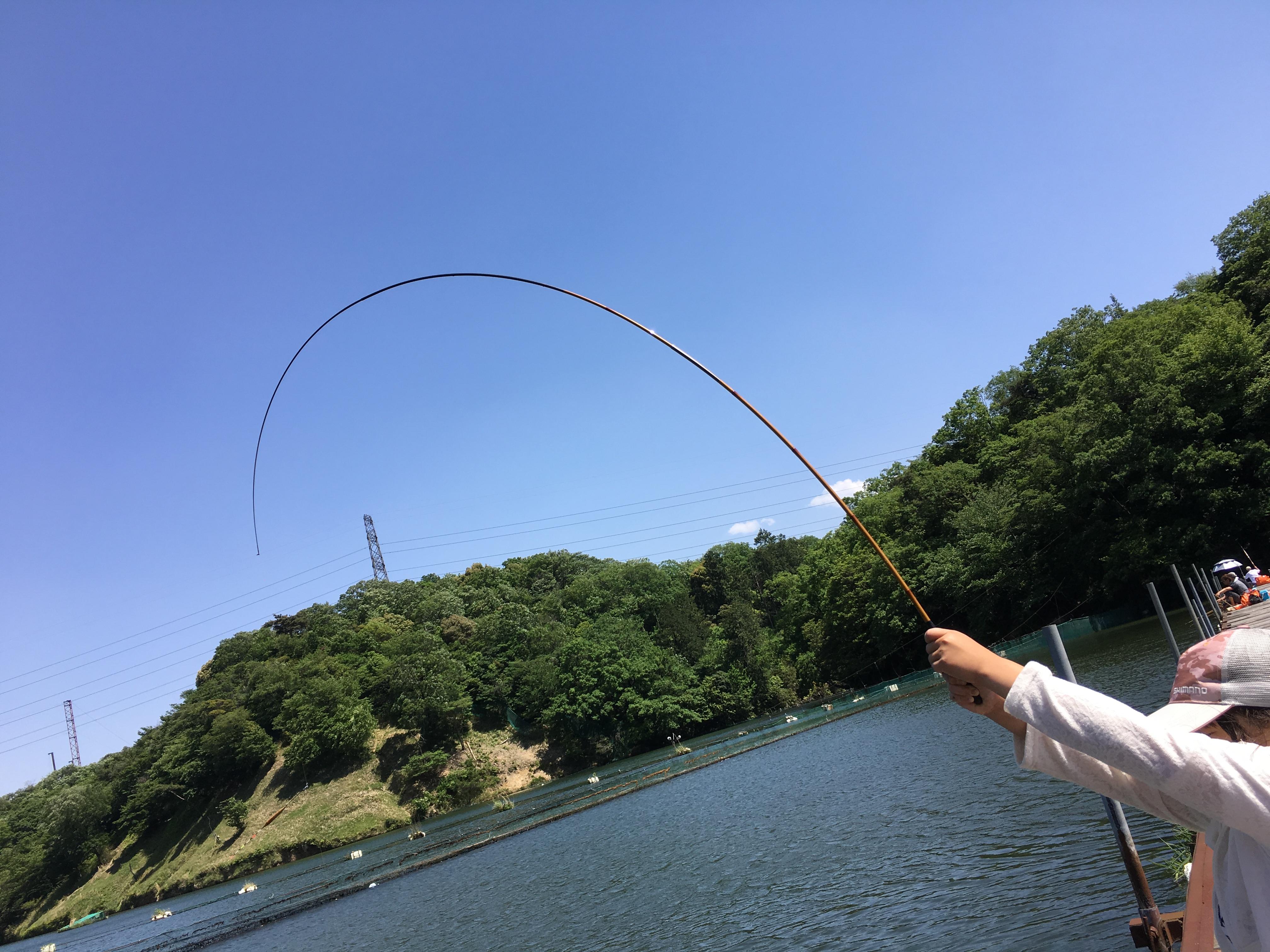 黄金週間釣行その3(分川池へ娘と 2016.05.04)