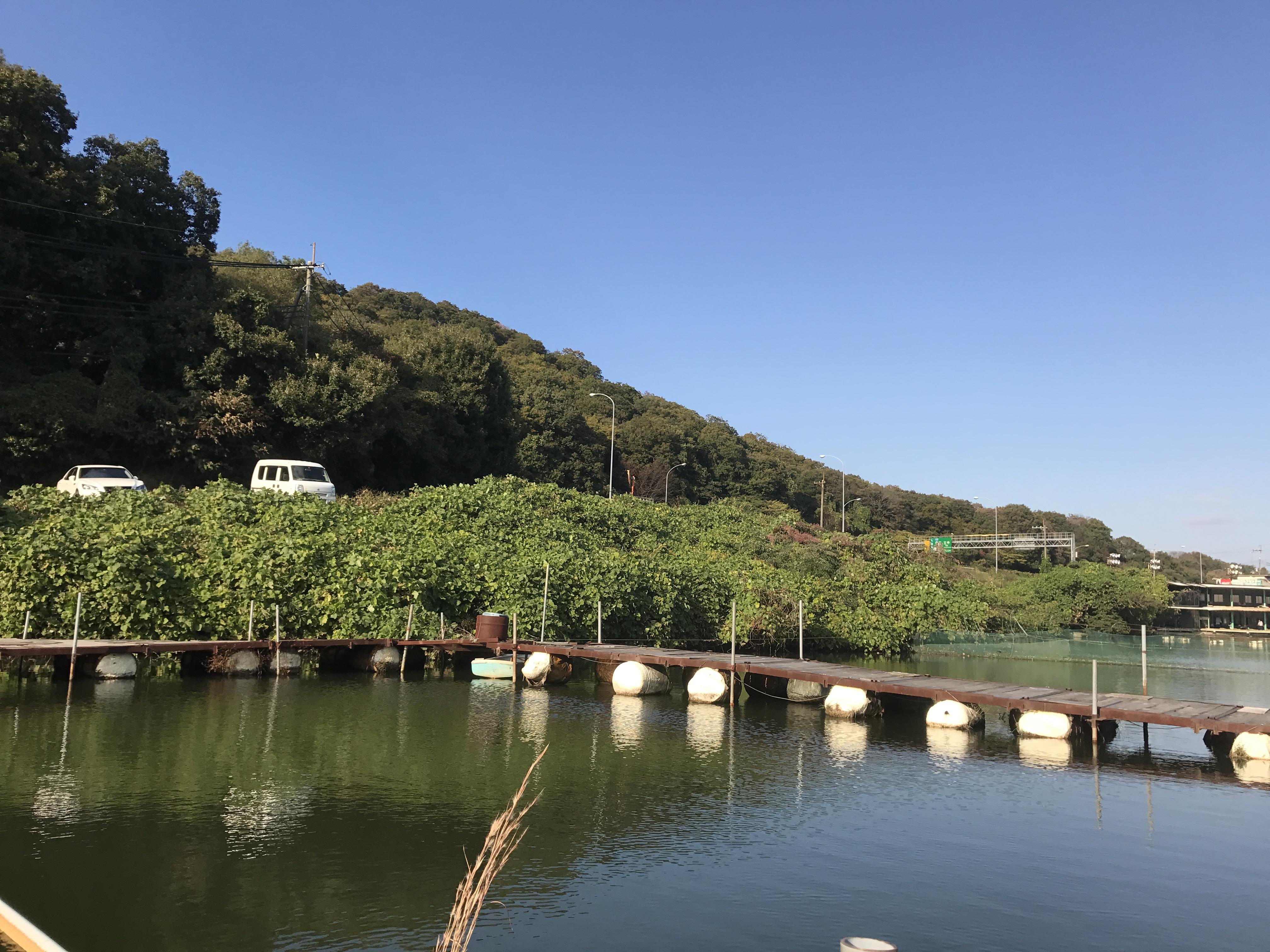 分川池(2016.11.03)
