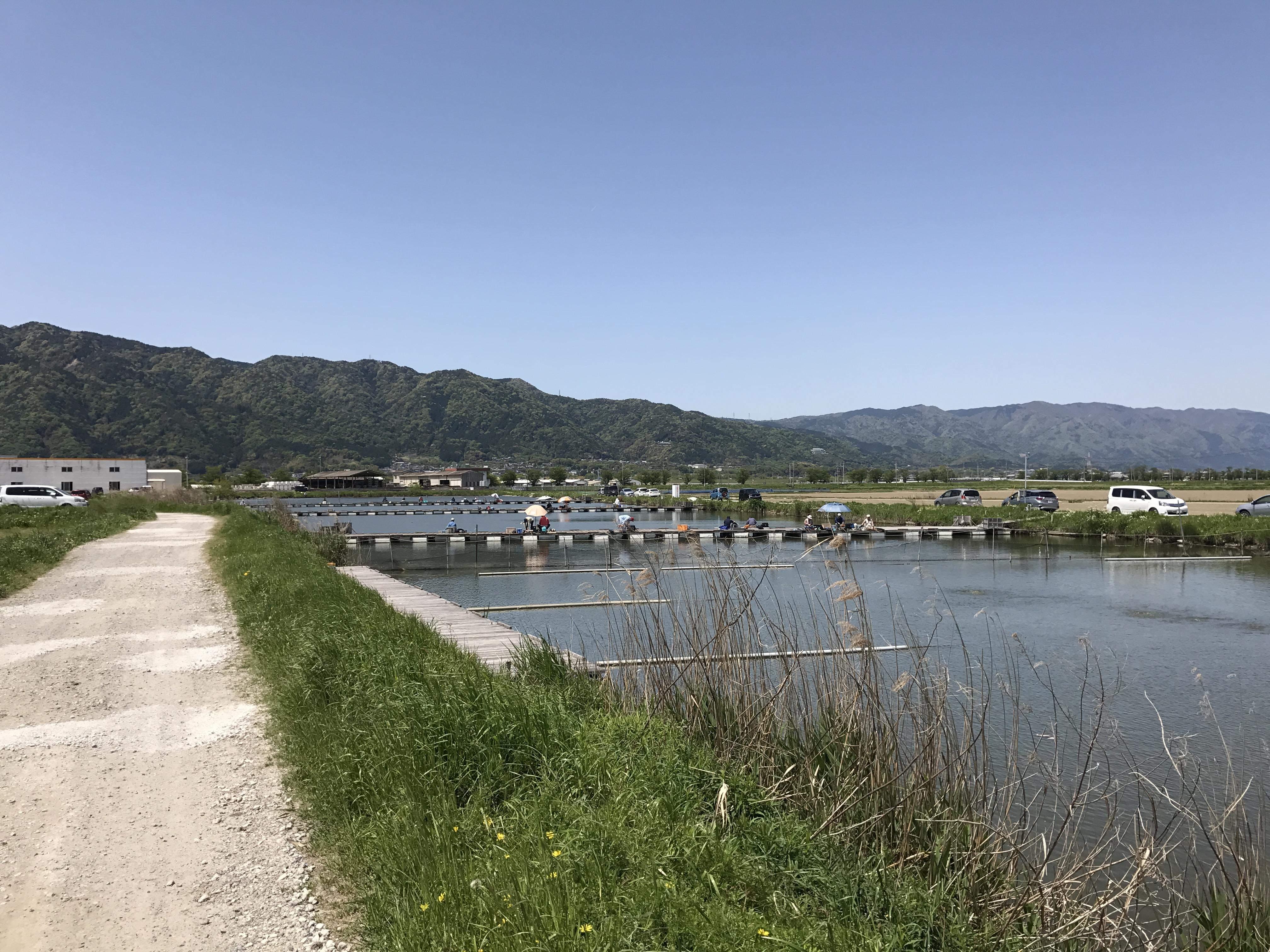GW釣行 その3(五町八幡大池 2017.05.02)