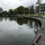 丸池(2017.05.13)