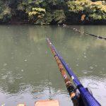3連続釣行その1   雨のひだ池(2017.11.14)☔️