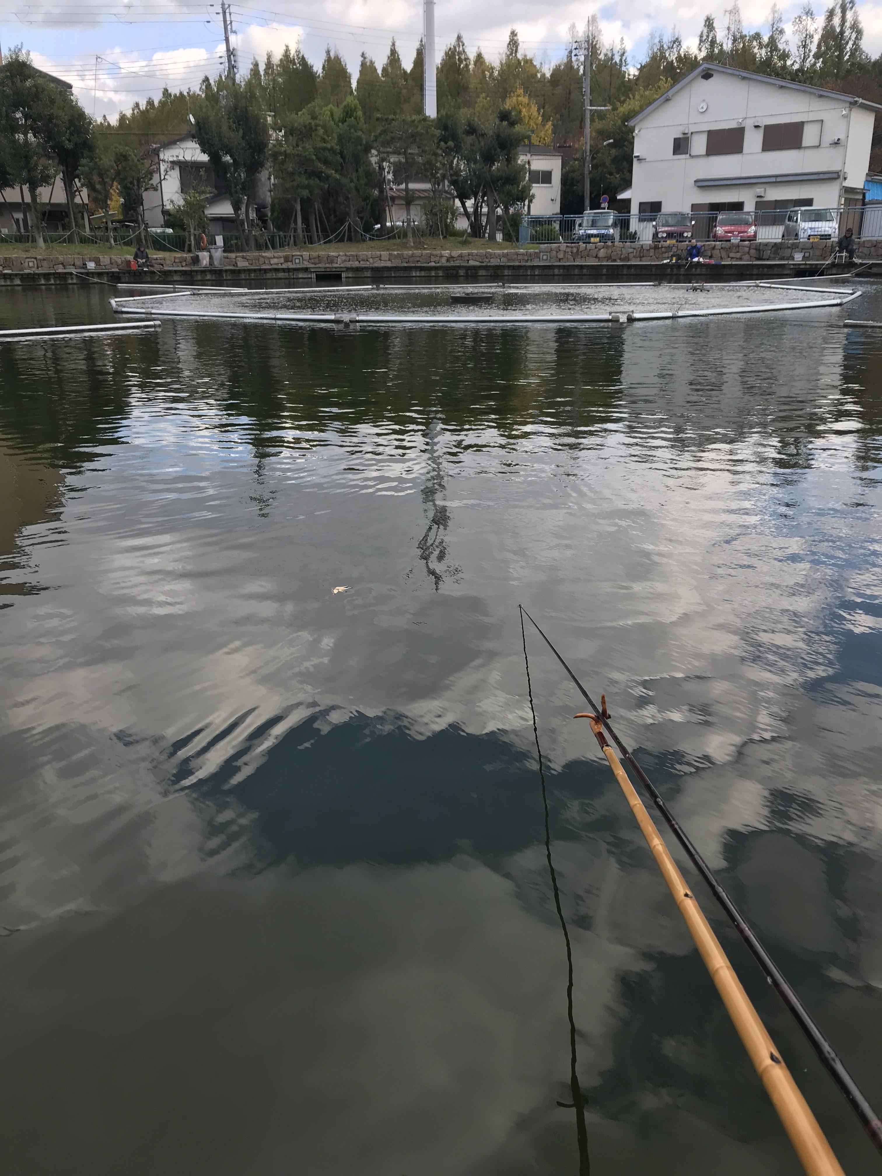 丸池(2017.11.19)