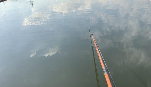 茨城新池(2018.12.25)